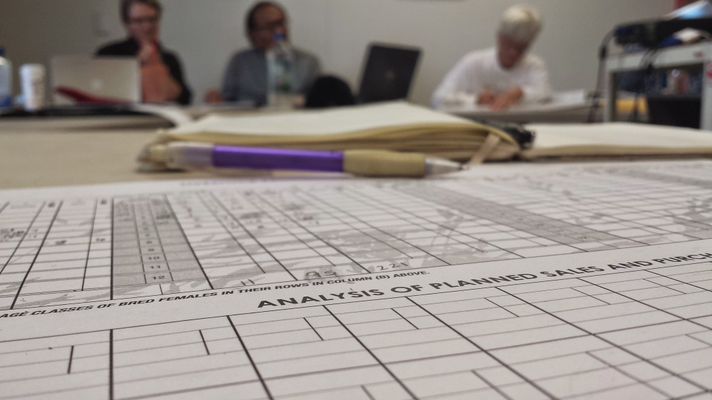We spent two days with pencils, erasers and enormous spreadsheets as we learned holistic financial planning.