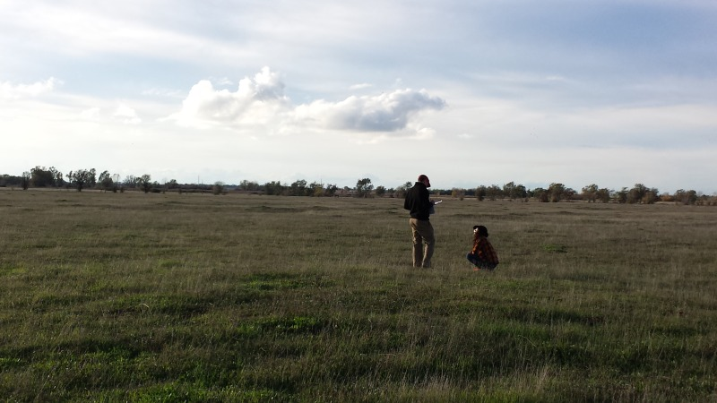 Ricardo and Brittany complete comprehensive biological monitoring in a field at Guidici Ranch.