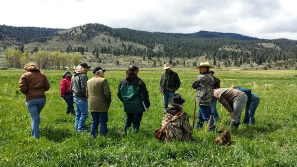 living off the land using Holistic Management, Jefferson Center for Holistic Management
