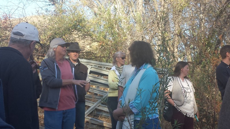 Sallie Calhoun, Paicines Ranch, pasture cropping, holistic management