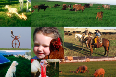 Burroughs Family Farms: Grazing for Change Consumer Revolution Sponsor