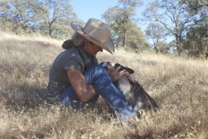 Guidici Ranch, holistic management, Oroville ,California