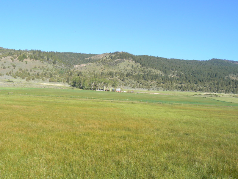 Springs Ranch, holistic management