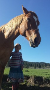 Springs Ranch, Jefferson Center for Holistic Management, Fort Bidwell, Calif.