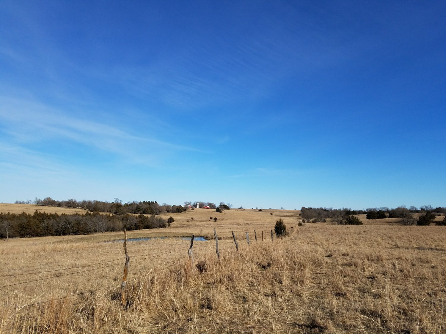 holistic management, holistic planned grazing, Kansas