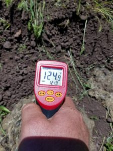 soil temperature, drought resilience, Holistic Planned Grazing, water cycle